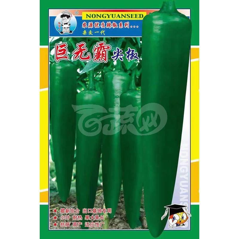 广州农源 巨无霸尖椒种子 小叶 耐热 果大果长 抗病 高产 适应性广 辣椒种子 5克装 .