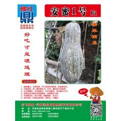 河南豫鼎红 安蜜1号蜜本南瓜 中熟 瓜长38厘米 单瓜重35公斤 抗病抗逆性强 10克装 南瓜种子