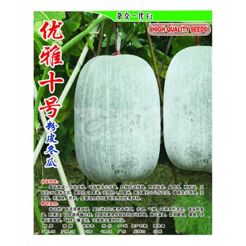 广东爱普农 优雅十号粉皮冬瓜种子 抗病抗逆性强 肉质致密 品质优 冬瓜种子 40克装