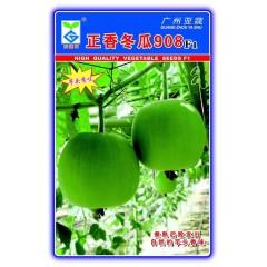 广州亚蔬 正香冬瓜908 香芋小冬瓜种子 1.5-2公斤重 香味浓 产量高  50粒装
