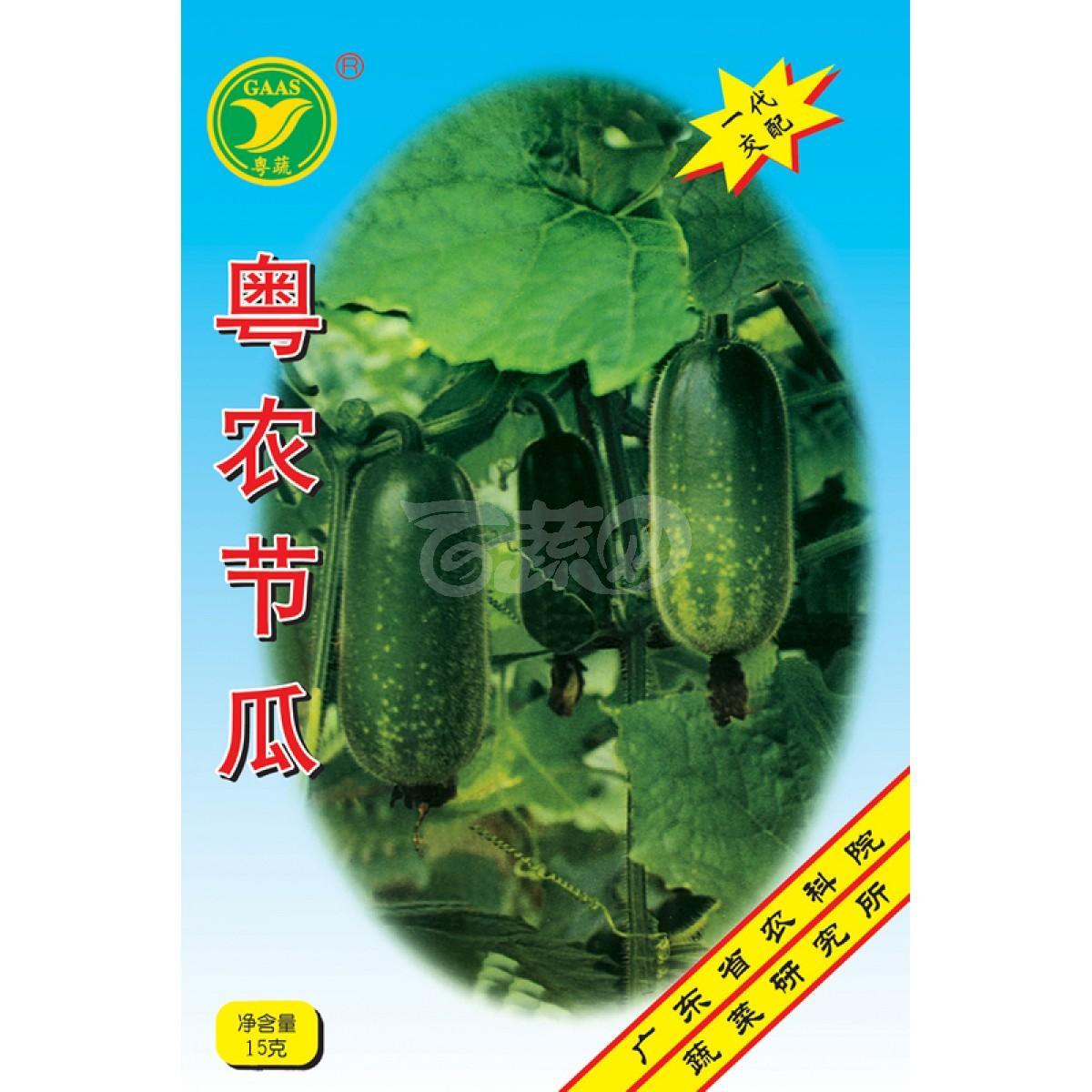 广东粤蔬 粤农节瓜种子 广东农科院选育 亩产4000公斤 1-3月 7-8月适播 节瓜种子 15克装