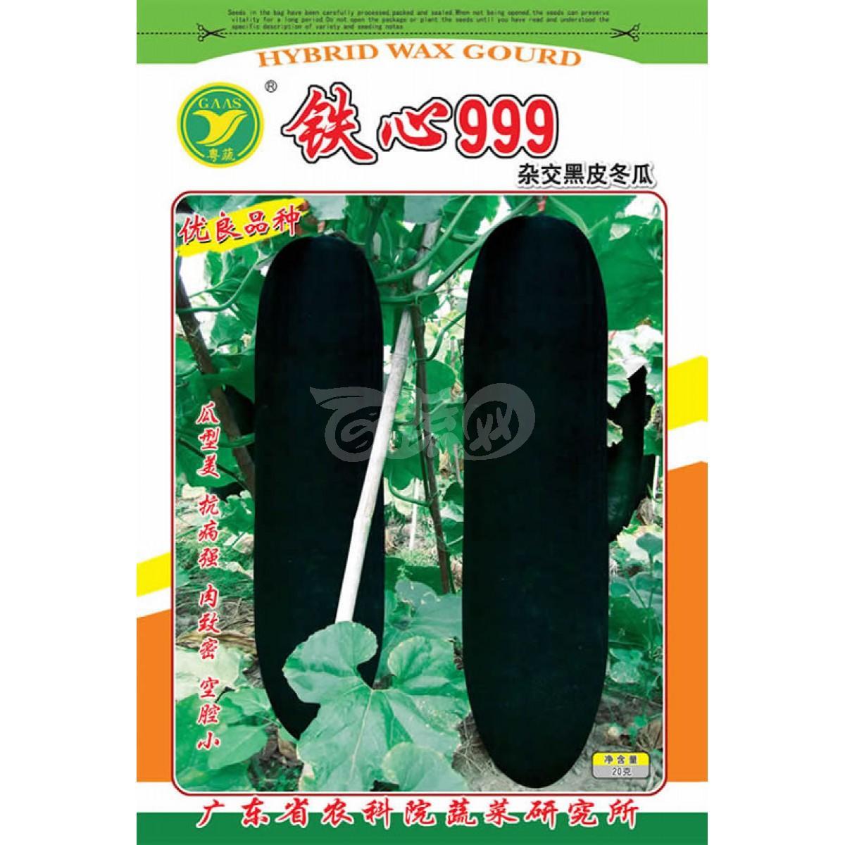 广东粤蔬 铁心999杂交冬瓜种子 广东农科院选育 细长 冬瓜种子 15克装