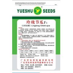 广东粤蔬 玲珑节瓜种子 广东农科院选育 最新研发新品种 节瓜种子 20克装