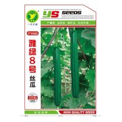 广东粤蔬 雅绿八号丝瓜种子 广东农科院选育 华南地区夏季唯一可种植丝瓜品种 丝瓜种子 15克装