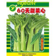 广东粤蔬 60天甜菜心 植株生长旺盛 叶柄短 叶片中等椭圆形 油绿有光泽 纤维少 品质佳 400克装 菜心种子