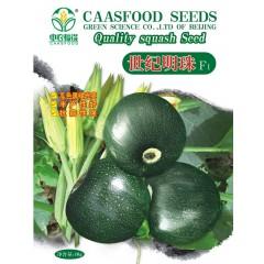 中国农科院 世纪明珠西葫芦种子 瓜色黑绿光亮 丰产性好 抗病性强 西葫芦种子 10克装