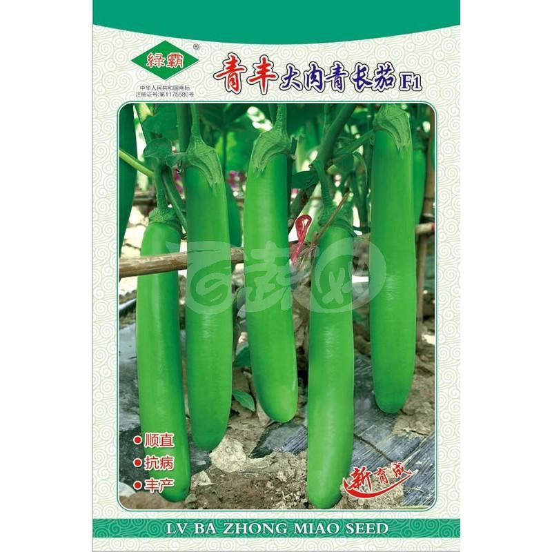 广州绿霸 青丰大肉青长茄种子  绿色光亮,果实顺直,果长30-36cm 单果平均重310-350克左右 茄子种子 1000粒装