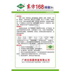 广州绿霸 东方168辣椒种子 果形靓 座果率高 商品性超群 适应性广 特耐贮运 辣椒种子 5克装