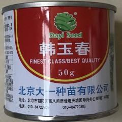北京大一种苗 韩玉春萝卜 适合早春种植 耐抽苔 根皮白 60天收获 单根重1.2kg左右 50克装