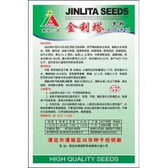 清远清蔬 金利塔黑籽大顶苦瓜种子(强烈推荐) 早熟 雌花多 结果力特强 出口基地专用优秀品种 苦瓜种子 10克装