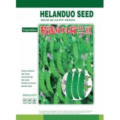 广州阳兴 精选604荷兰豆种子 紫红花 新品种 产量最高 荷兰豆种子 500克装