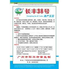 广州阳兴 长丰38号高产玉豆种子 优质高产 抗病 适应性广 玉豆种子 400克装
