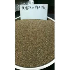 广州卓艺种业 美国进口脱壳狗牙根种子 护披 草坪种子 500克装