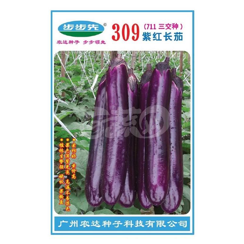 广州农达 309紫红长茄种子 卖相好 卖价高 果色深紫光亮 高温不易退色 植株生势强 果较直 茄子种子 1000粒装